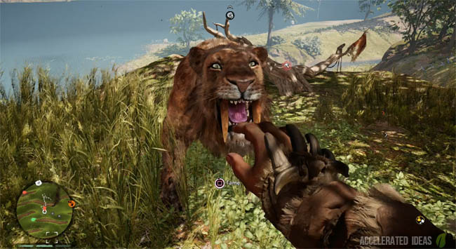 Where to Tame a Sabretooth Tiger Early in the Game