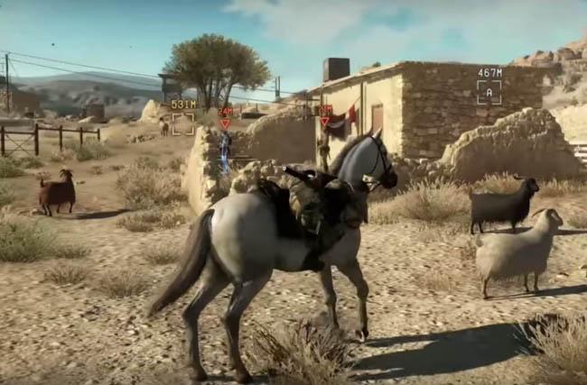 D-Horse