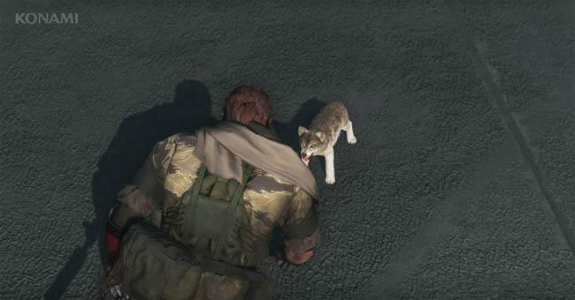 Puppy D-Dog