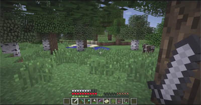Download Minecraft Snapshot 12w19a - New Cocoa Plants, Large Biomes World Type