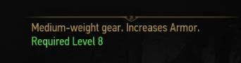 armour level